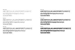font – basiq design agency, trieste