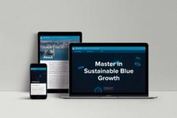 web site – basiq design agency, trieste